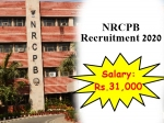 NRCPB Recruitment 2020: ரூ.31 ஆயிரம் ஊதியத்தில் மத்திய அரசு வேலை!