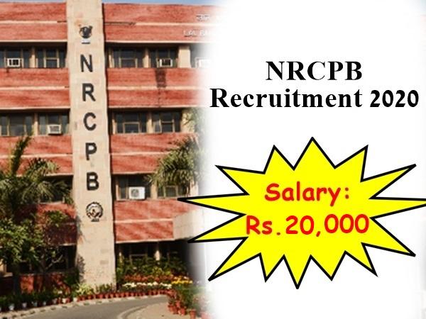 NRCPB Recruitment 2020: எம்.எஸ்சி பட்டதாரிகளுக்கு ரூ.20 ஆயிரம் ஊதியத்தில் மத்திய அரசு வேலை!
