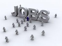 Nin Hyderabad Recruitment 6 Senior Research Fellow Posts