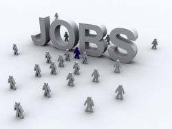 Government Job Searchers Government Job Details Be