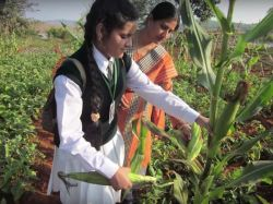 Coimbatore Tamil Nadu Agricultural University Ranking List