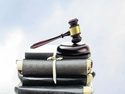Case Hearing Medical Studies Allotment For Tn Students