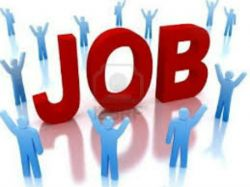 Government Job Searchers Government Job Details Be Submitte