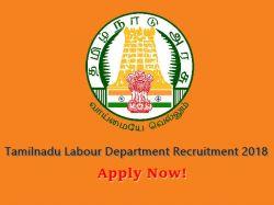 Tamilnadu Labour Department Recruitment 2018 Stamping Smith