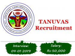Tanuvas Recruitment 2019 Apply 02 Farm Manager Posts
