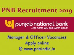 Pnb Recruitment 2019 325 Manager Officer Vacancies Apply