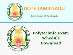 Tndte Diploma April Exam Time Table 2019 Dote Polytechnic Ex