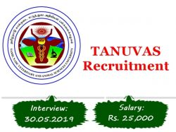 Tanuvas Recruitment 2019 Walkin For Research Associate 1 Post