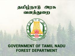Tamil Nadu Forest Dept 2019 Apply Online For 564 Forest Watcher Posts