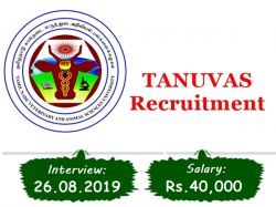 Tanuvas Recruitment 2019 Apply Online 01 Veterinary Graduate Posts