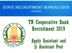 Tn Cooperative Bank Recruitment 2019 Apply 300 Assistant And Jr Assistant Post