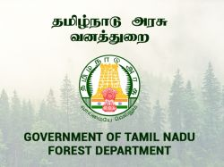 Tnfusrc Forest Guard Notification 2019 Out Apply Now 320 Forest Guard Post
