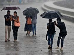 Madras University Exams On Nov 28 Postponed Due To Rain