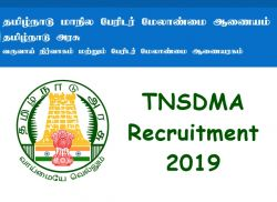 Tnsdma Recruitment 2019 Apply Online For Senior Consultant Data Entry Operator And Various Post