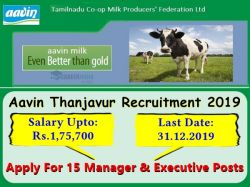 Aavin Thanjavur Recruitment 2019 Apply For 15 Manager And Junior Executive Posts