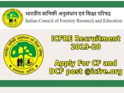 Icfre Recruitment 2019 20 Apply For Cf And Dcf Post Icfre