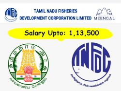 Tnfdc Recruitment 2020 Apply Online For 12 Assistant Manager Post