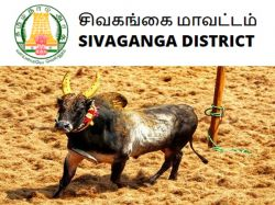 Tnahd Sivagangai Recruitment 2020 Apply For Driver Post