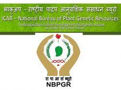 Nbpgr Recruitment 2020 Application Invited For Junior Research Fellow Post