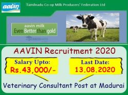 Aavin Recruitment 2020 Application Invited For Veterinary Consultant Post At Madurai
