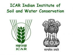 Icar Indian Institute Of Soil And Water Conservation Young Professional Recruitment