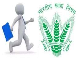 Iari Recruitment 2020 Application Invited For Jrf Post At Sugarcane Icar Gov In