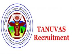 Tanuvas Recruitment 2020 Application Invited For Project Assistant Vacancy