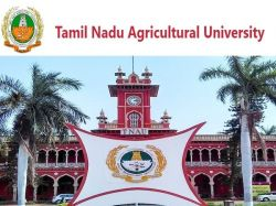 Tnau Recruitment 2020 Apply Online For Driver Post At Tnausms In