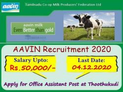 Aavin Recruitment 2020 Apply For Office Assistant Post At Thoothukudi