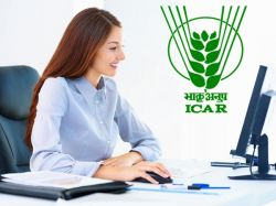 Iari Recruitment 2021 Application Invited For Rf And Project Assistant Post