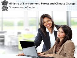 Moef Recruitment 2021 Apply For Consultants Post