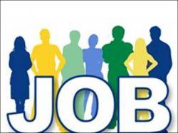 Csir Nbri Recruitment 2021 Senior Technical Officer Technical Officer Post