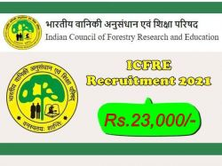 Icfre Recruitment 2021 Apply For Senior Project Fellow Junior Project Fellow And Other Post
