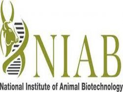 Niab Recruitment 2021 Apply Online For Project Associate And Field Assistant