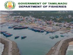 Tn Fisheries Department Recruitment 2021 Apply For Manager Mis Manager And Other Post