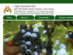 Nhb Recruitment 2021 Apply For Deputy Director Horticulture Officer Post