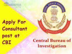 Cbi Recruitment 2021 Application Invited For Consultant Post At Cbi