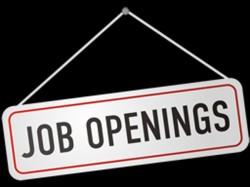 Government Examination Department Recruitment