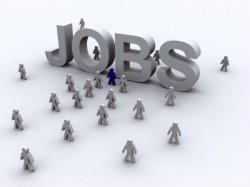 Job Notification Of Npiu