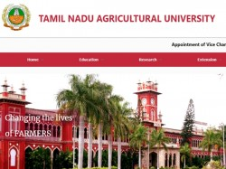 Applicants Given Jobs On Compassionate Grounds Tn Cm