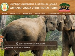 Chennai Vandalur Zoo Recruitment 2019 Apply Online 02 Assi