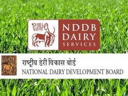 Nddb Jobs 2019 01 Executive Director Vacancy Any Graduate