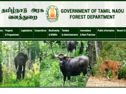 Tamil Nadu Forest Dept Recruitment 2019 564 Forest Watcher