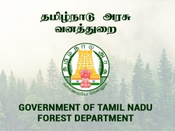 Tnfusrc Forest Watcher 2019 Recruitment Online Application