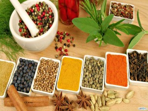Homeopathic Physiotherapy Medical Studies