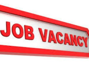 Job Opportunity Of Bharathiar University
