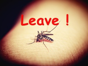 Mosquito Prevention Schools One Week Leave