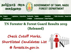 Tn Forester Forest Guard Results 2019 Released Check C