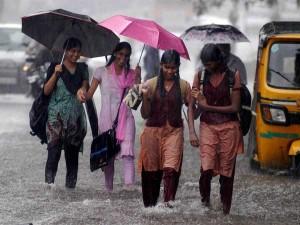 Cyclone Maha Schools Colleges Close Due To Heavy Rain In Tamil Nadu