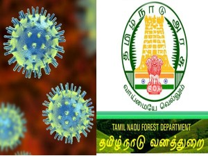 Tnfusrc Forest Guard Exam Paper Evaluation 2020 Hold For Coronavirus Covid 19